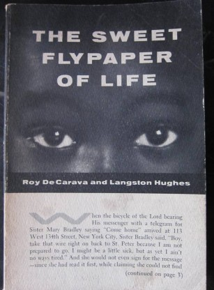 Sweet Flypaper of Life
