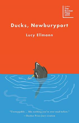 Ducks Newburyport by Lucy Ellman